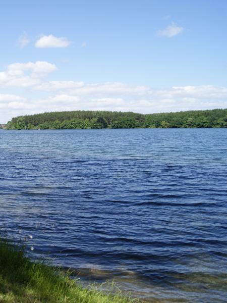 Dreetzsee
