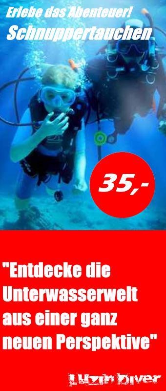 schnuppertauchen_hoch Kopie2